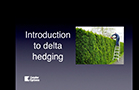 Introduction to Delta Hedging